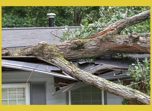 storm damage Acumen Insurance