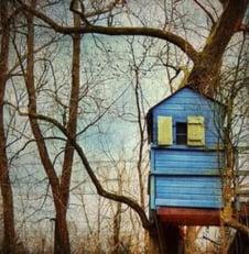 Home Insurance Summer Treehouse